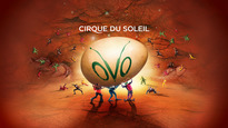 OVO - <em>Cirque du Soleil's</em> performance inspired by beautiful insects
