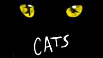 Cats - Neil Simon Theatre