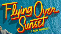 Flying Over Sunset -